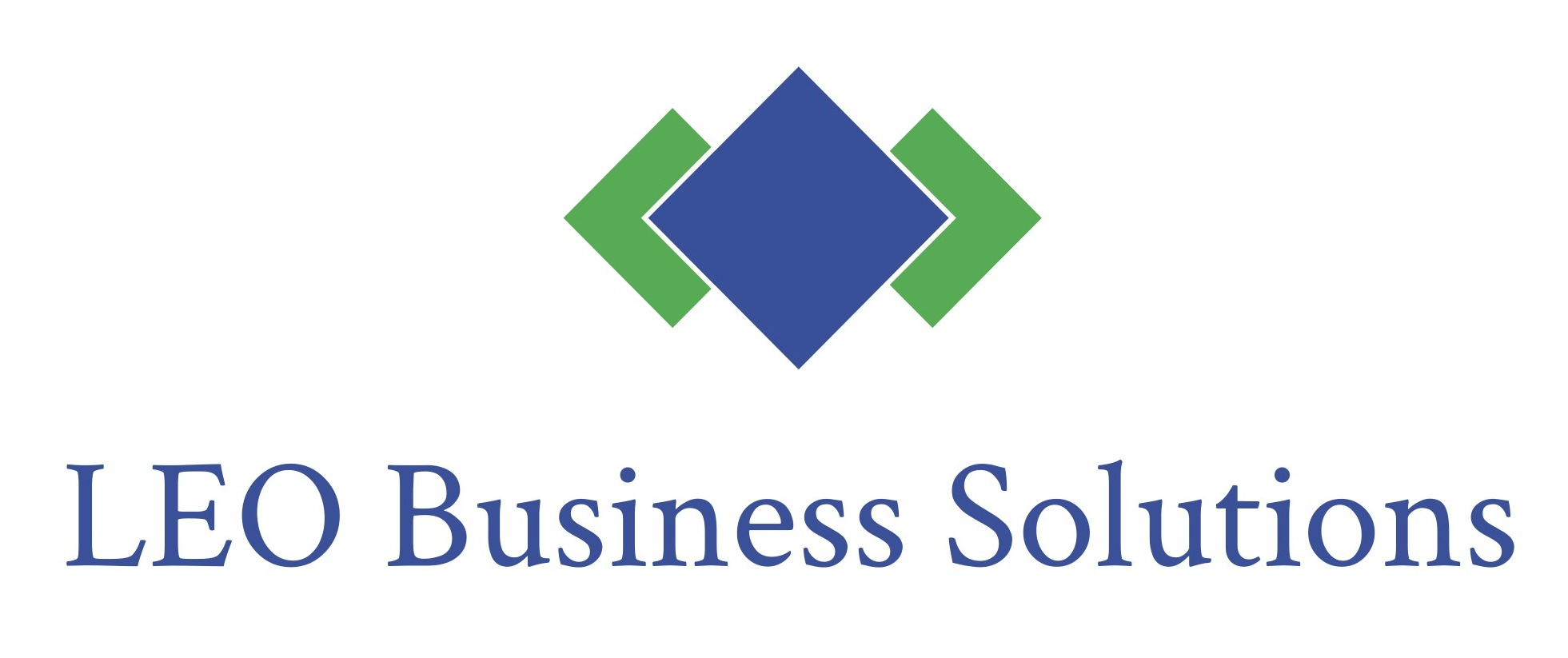 LEO Business Solutions LLC